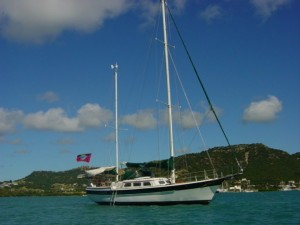 Ivy sailing