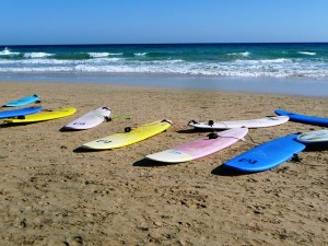 surfboards-