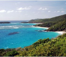 Caribbean <br>St Vincent & The Grenadines