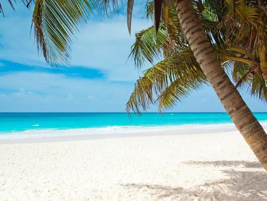 Hot Caribbean beach