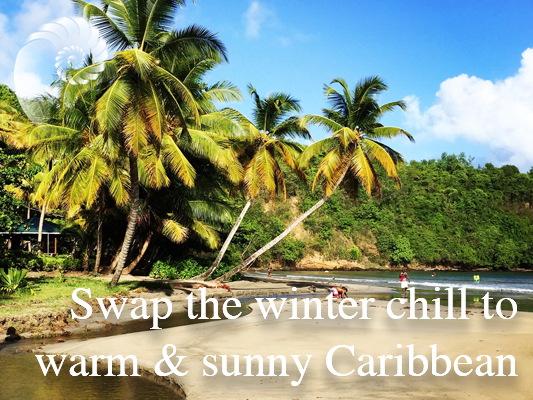 winter chill vs Sunny Caribbean