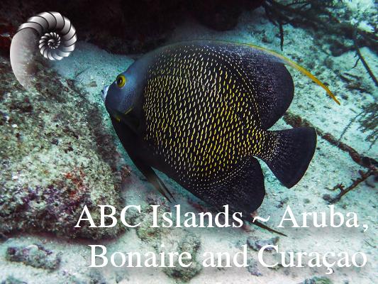 ABC-islands2