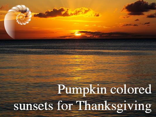 pumpkin sunset